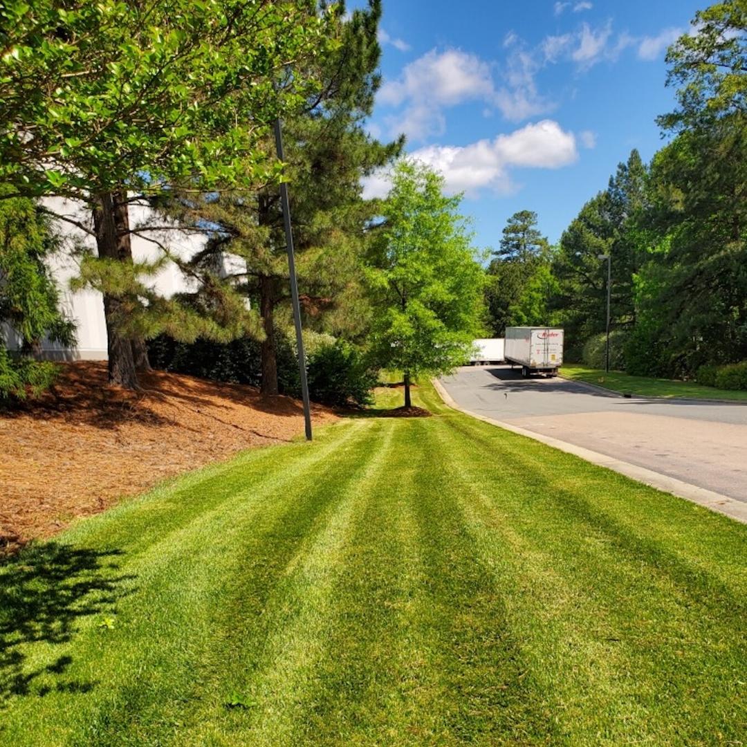 Lawn Care - commercial landscape management